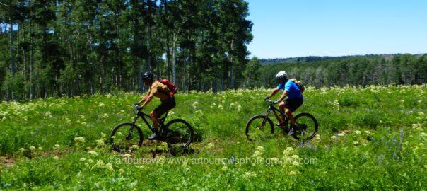 Mountain Biking Fun