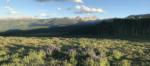 Hay Park Area & Mountain Bike Trail Advocacy